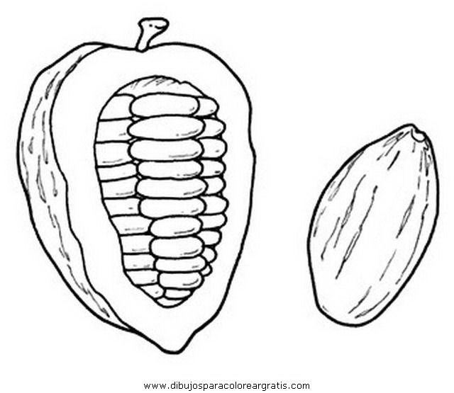 alimentos/fruta/cacao_0.JPG