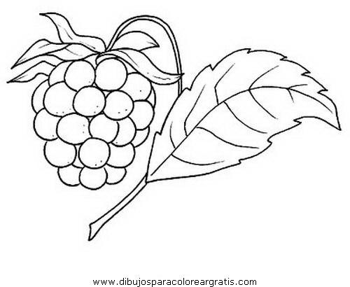 alimentos/fruta/frambuesa.JPG
