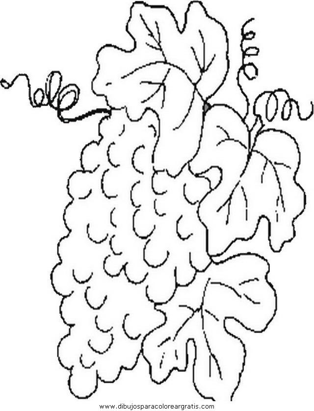 alimentos/fruta_invierno/fruta_invierno18.JPG