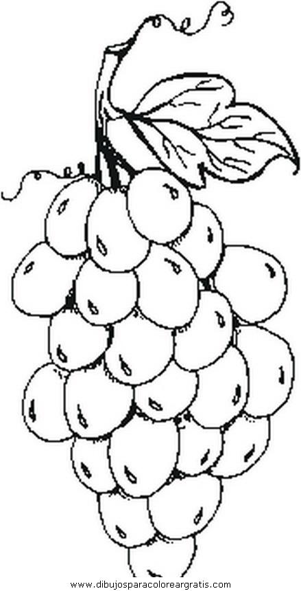 alimentos/fruta_invierno/fruta_invierno26.JPG
