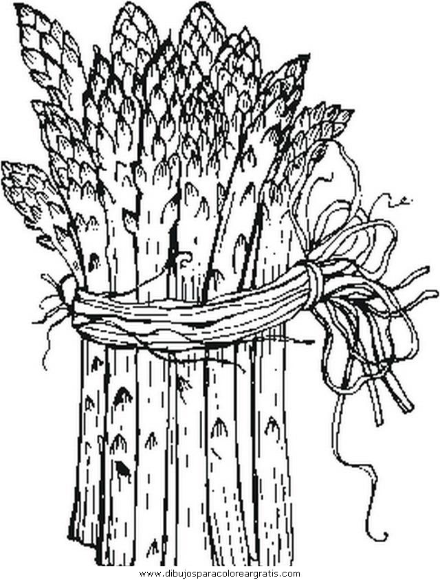 alimentos/verdura/asparagi.JPG