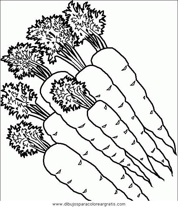 alimentos/verdura/carote.JPG