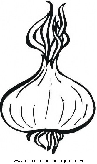 alimentos/verdura/cebolla_0.JPG
