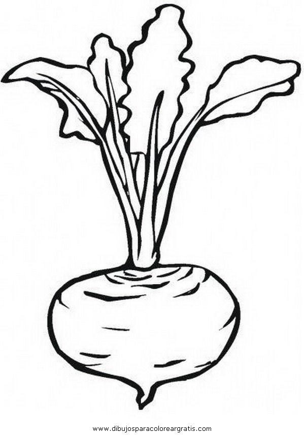 alimentos/verdura/remolacha_1.JPG