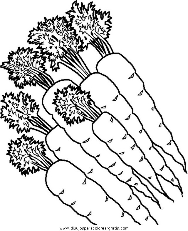 alimentos/verdura/verdura_38.JPG