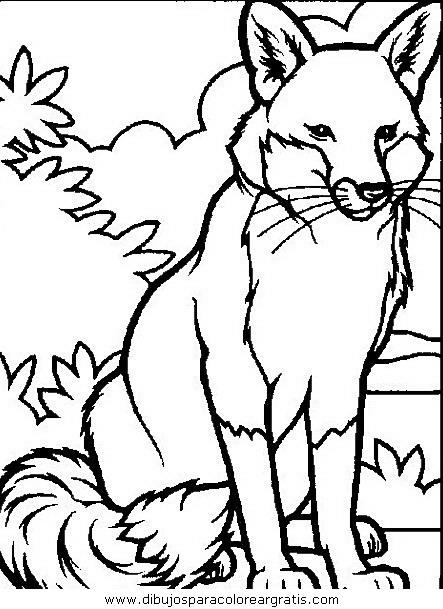 animales/animales_varios/animales_varios_006.JPG