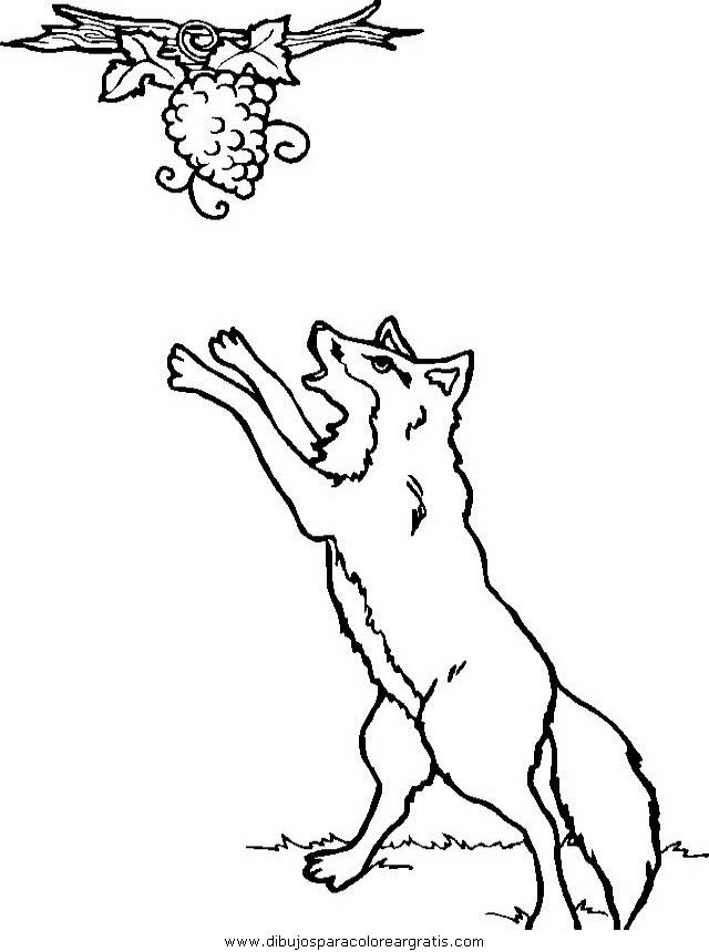 animales/animales_varios/animales_varios_023.JPG