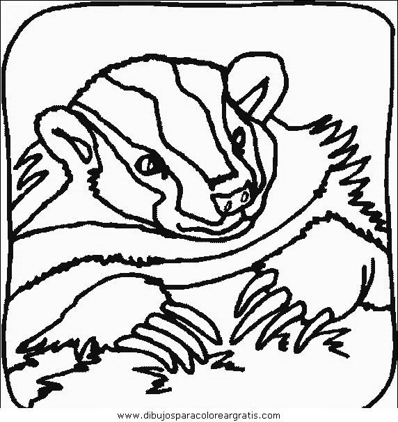 animales/animales_varios/animales_varios_025.JPG