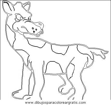 animales/animales_varios/animales_varios_047.JPG