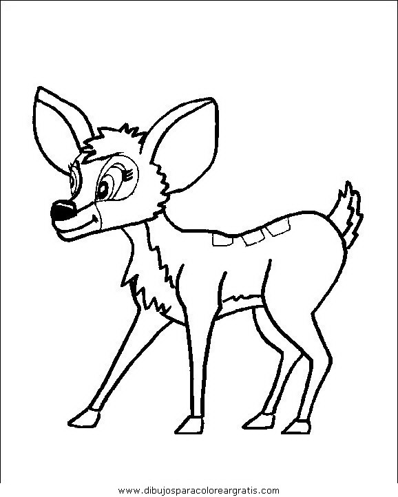animales/animales_varios/animales_varios_059.JPG
