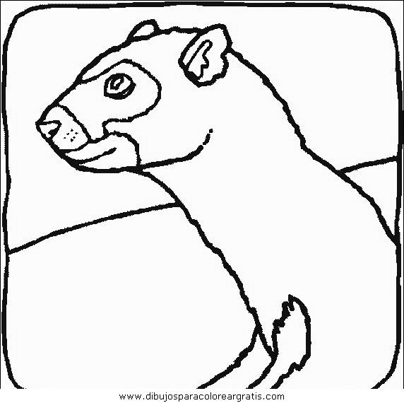 animales/animales_varios/animales_varios_062.JPG