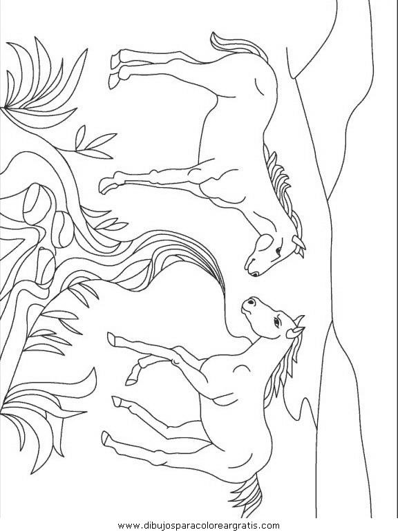animales/animales_varios/animales_varios_097.JPG