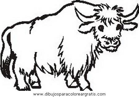 animales/animales_varios/animales_varios_139.JPG