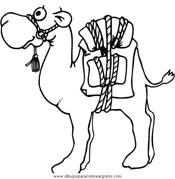 animales/camellos/camellos_22.JPG