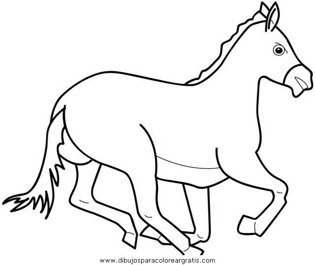 animales/cavallos/cavallos_03.JPG