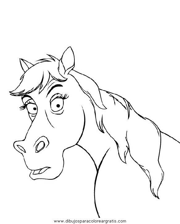 animales/cavallos/cavallos_04.JPG