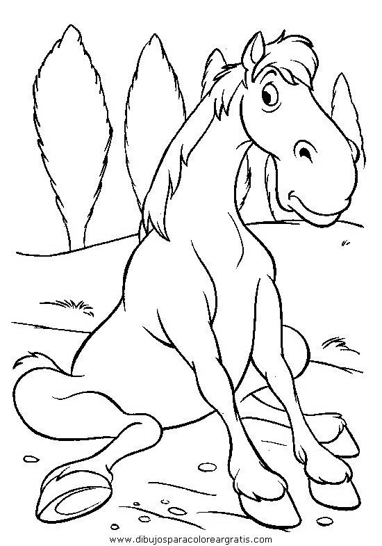 animales/cavallos/cavallos_05.JPG