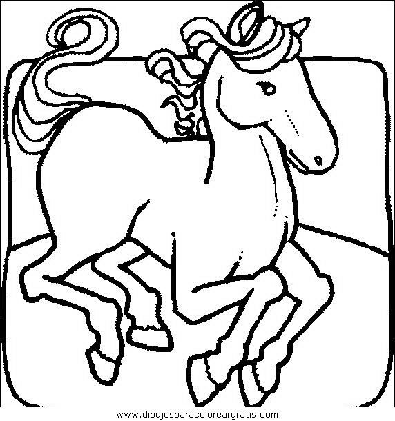 animales/cavallos/cavallos_06.JPG