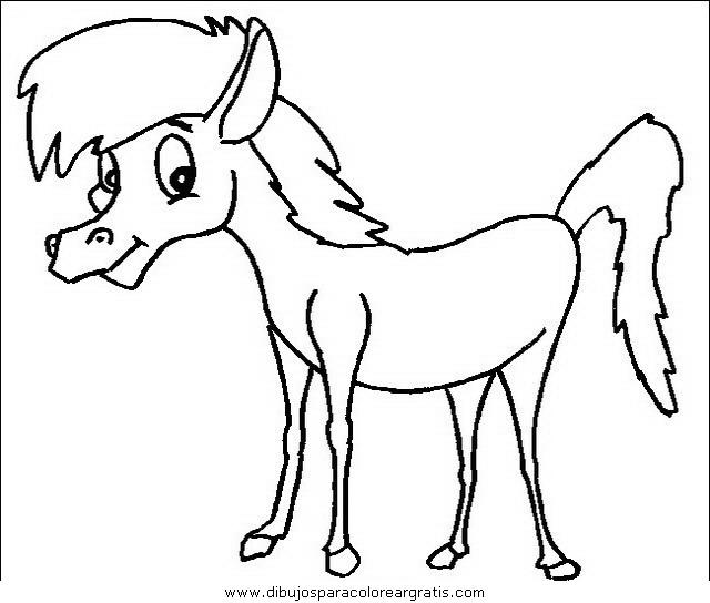 animales/cavallos/cavallos_07.JPG