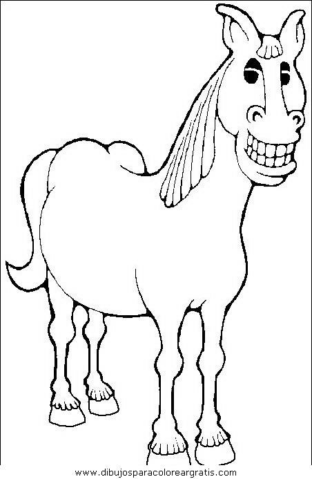 animales/cavallos/cavallos_10.JPG