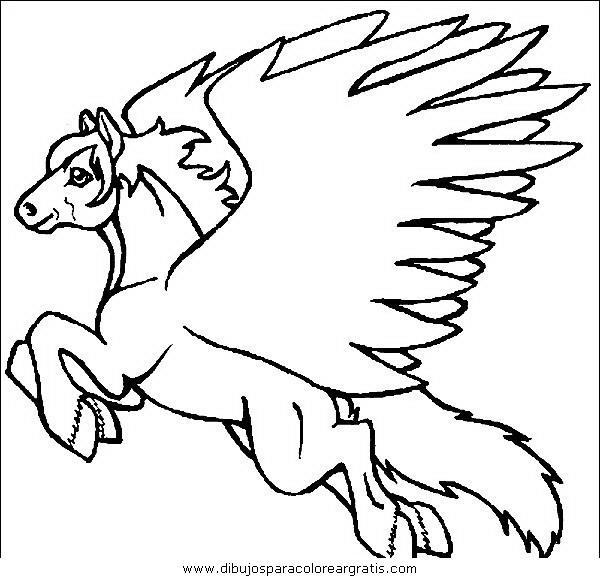 animales/cavallos/cavallos_27.JPG