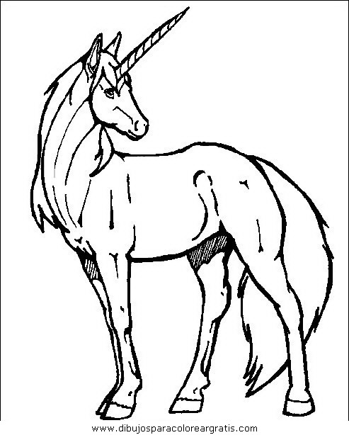 animales/cavallos/cavallos_32.JPG