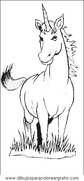 animales/cavallos/cavallos_33.JPG