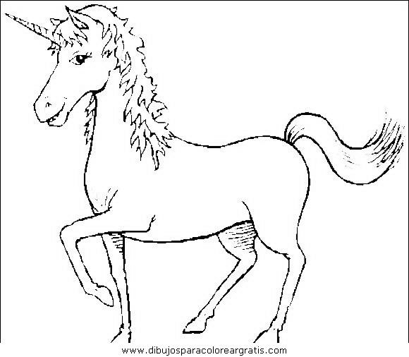 animales/cavallos/cavallos_35.JPG