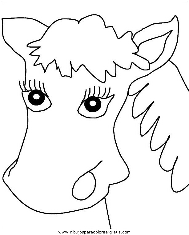 animales/cavallos/cavallos_38.JPG