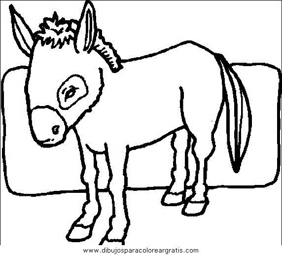 animales/cavallos/cavallos_39.JPG
