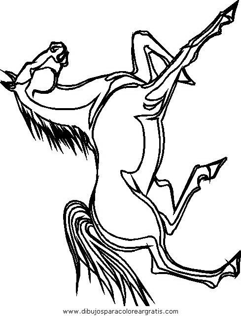animales/cavallos/cavallos_45.JPG