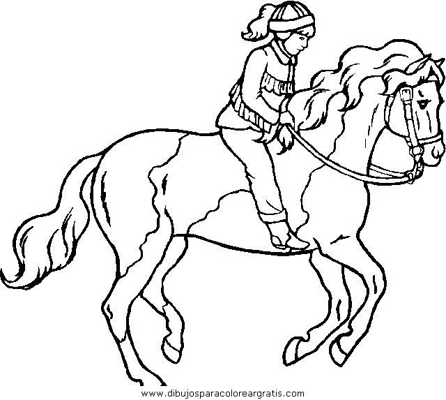 animales/cavallos/cavallos_60.JPG