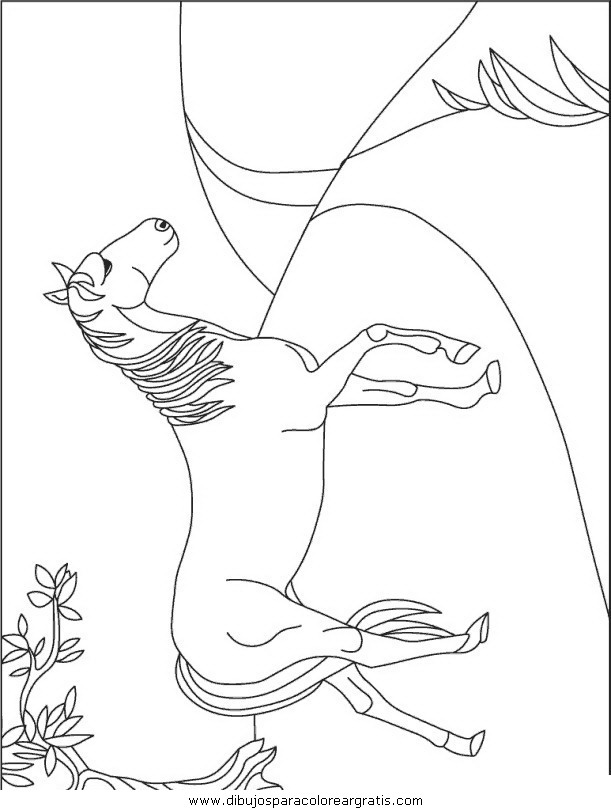 animales/cavallos/cavallos_73.JPG
