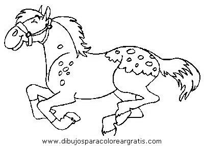 animales/cavallos/cavallos_78.JPG