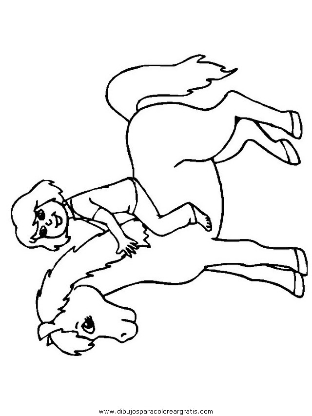 animales/cavallos/cavallos_88.JPG