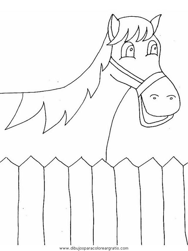 animales/cavallos/cavallos_90.JPG