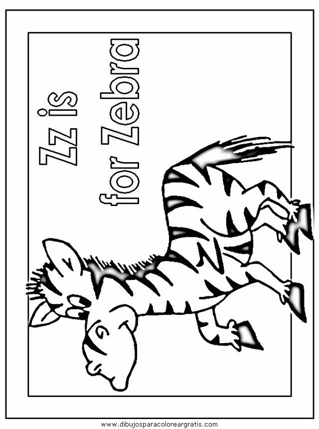 animales/cebras/cebras_02.JPG