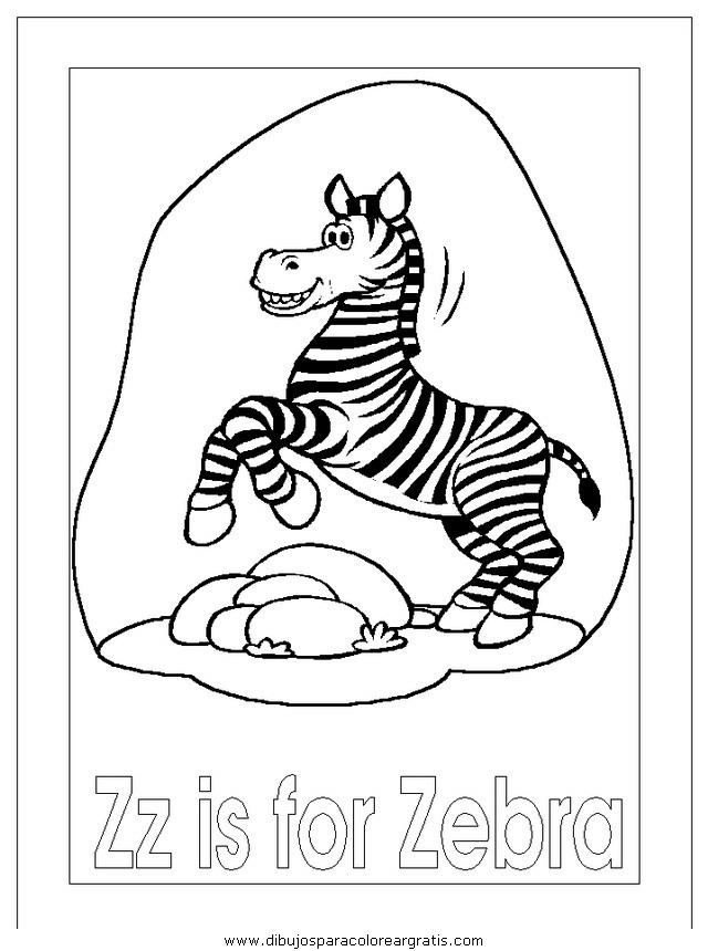 animales/cebras/cebras_03.JPG