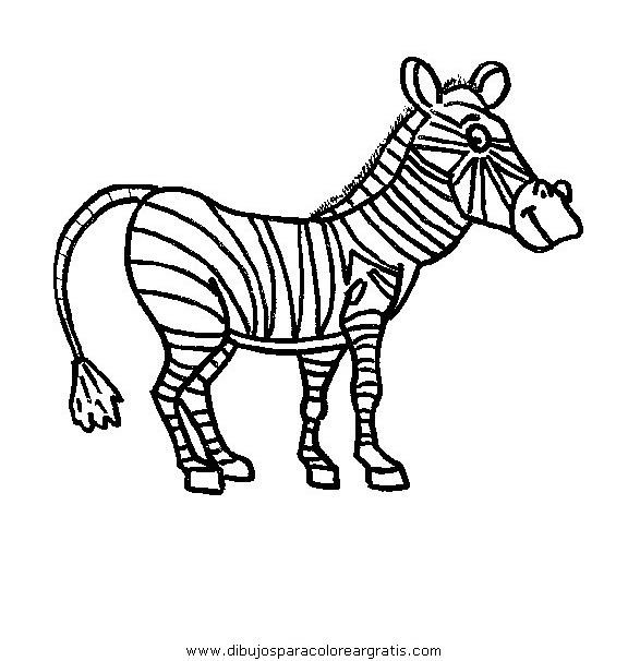 animales/cebras/cebras_14.JPG