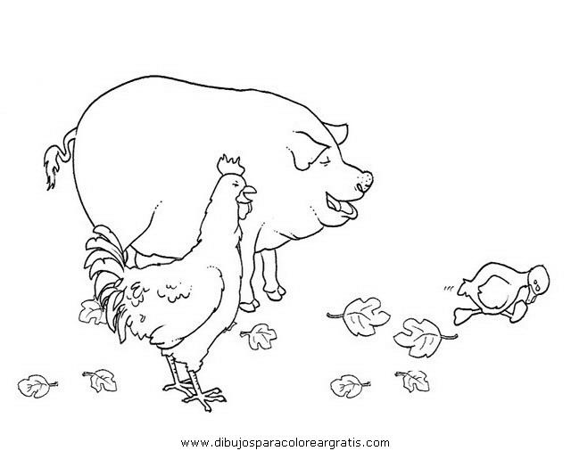 animales/cerdos/cerdos_04.JPG