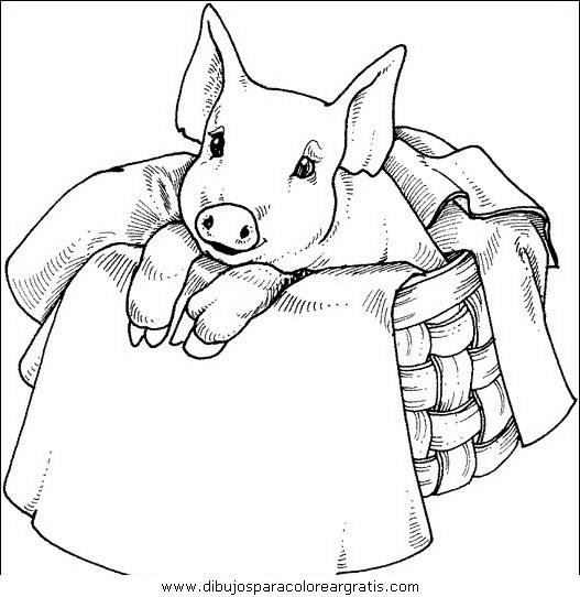 animales/cerdos/cerdos_13.JPG
