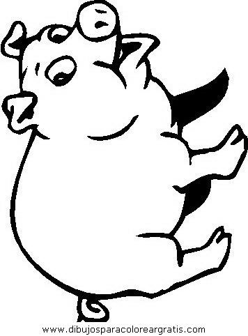 animales/cerdos/cerdos_16.JPG
