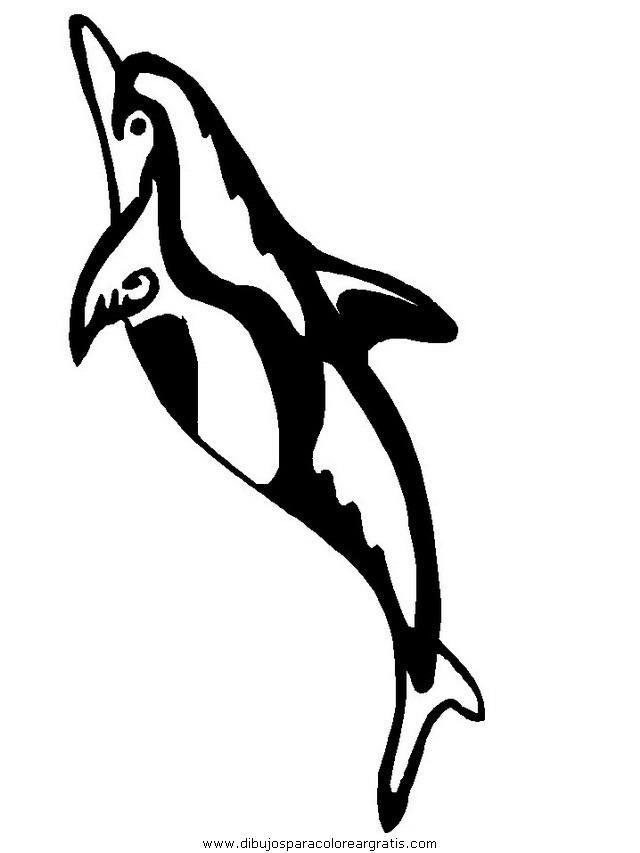 animales/delfines/delfines_03.JPG