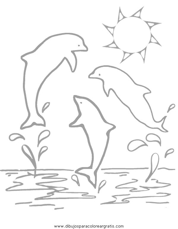 animales/delfines/delfines_14.JPG