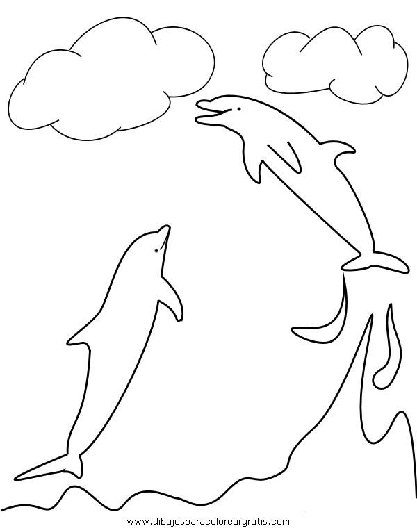 animales/delfines/delfines_16.JPG