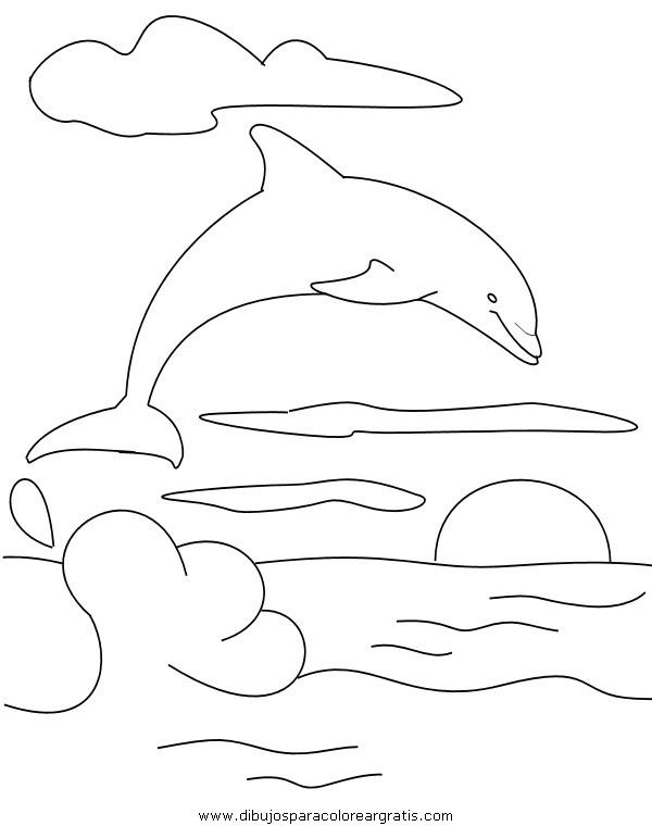 animales/delfines/delfines_19.JPG