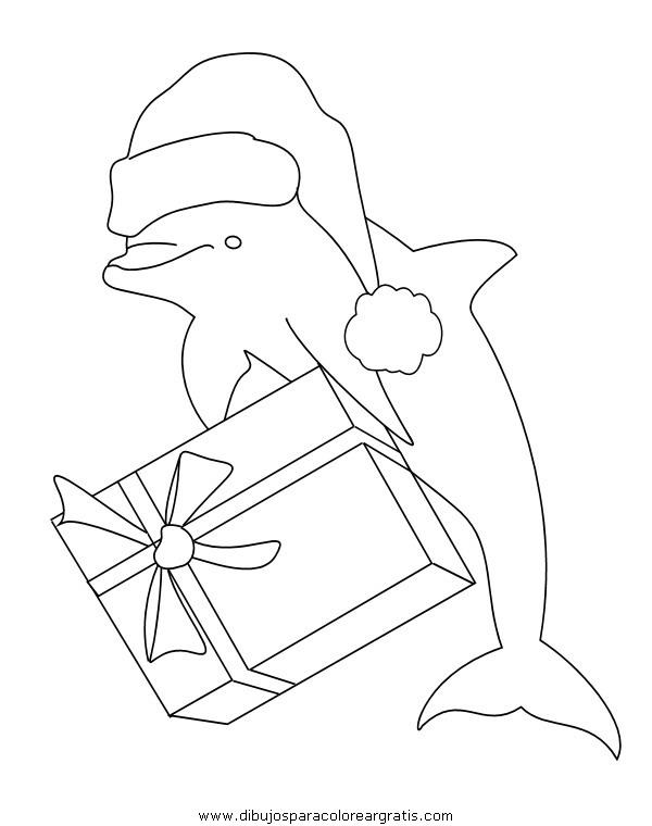 animales/delfines/delfines_20.JPG