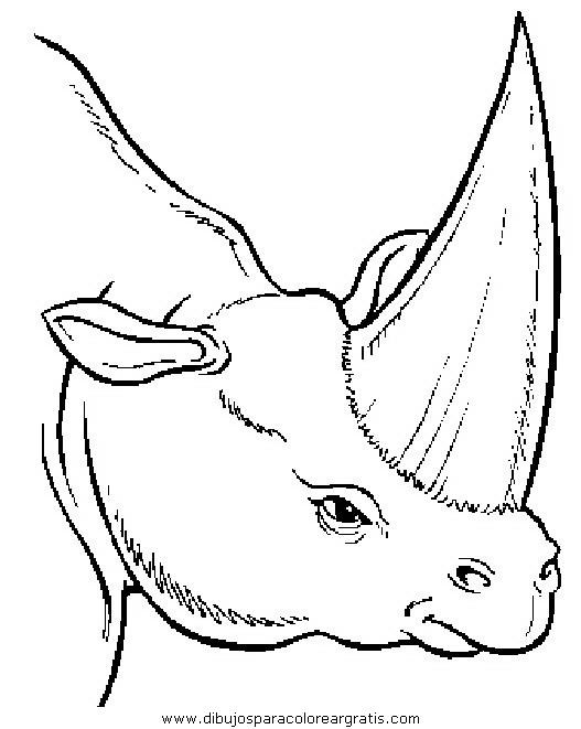 animales/dinosaurios/dinosaurios_092.JPG