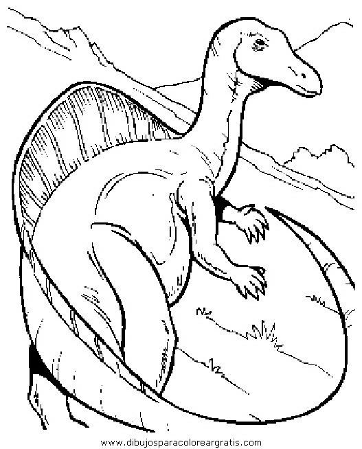 animales/dinosaurios/dinosaurios_098.JPG