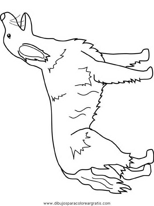 animales/dinosaurios/dinosaurios_204.JPG